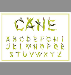 Set of decorative alphabet reed vector
