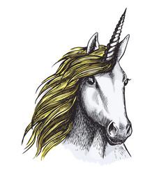 sketch unicorn horse mystic magic animal vector image