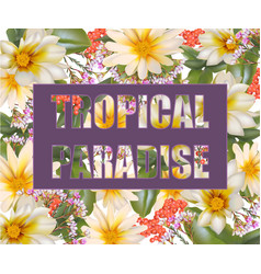 Tropic paradise card chamomile flowers vector