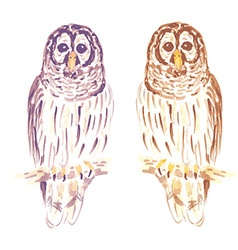 Watercolor cute owl in vintage style vector