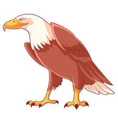cartoon smiling eagle vector image