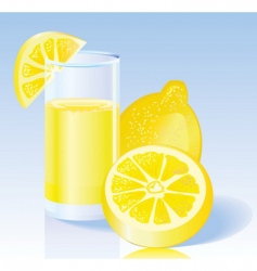 fresh lemon juice vector image