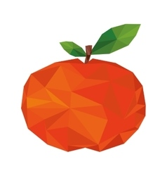Abstract tangerine fruit icon vector