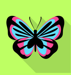 blue pink butterfly icon flat style vector image