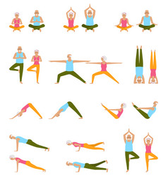 elderly people practice yoga set of asanas relax vector image