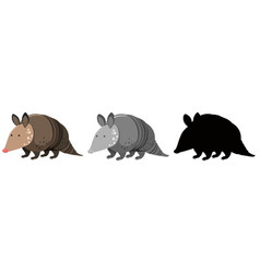 set of armadillo character vector image