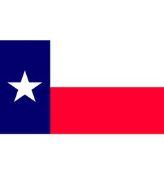 Texas vector image