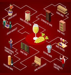 wine production isometric flowchart vector image