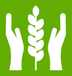 hands and ear of wheat icon green vector image vector image