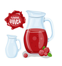 Juice with cranberry in a glass jug vector