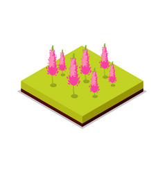Pink flowers isometric 3d icon vector