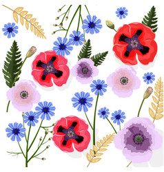 poppy flowers pattern floral background vector image