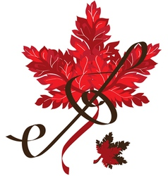 red leaf vector image