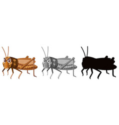 Set of cockroaches white background vector