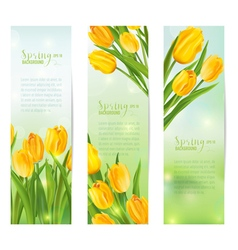 Spring Flower Banner Set - with Colorful Tulips vector