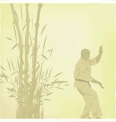 The old the man is engaged in karate vector image