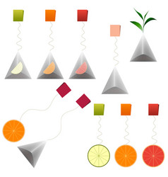 green black tea bags fruit tea clipart set vector image