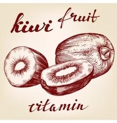 fruit kiwi set hand drawn llustration vector image