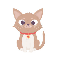 brown little cat sitting cartoon pets vector image