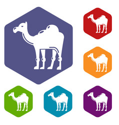 camel icons hexahedron vector image