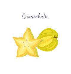 Carambola or starfruit exotic fruit icon vector
