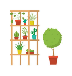 cartoon rooms furniture and plants concept vector image