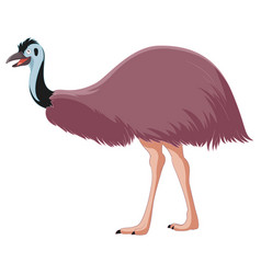 cartoon smiling emu vector image