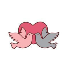 dove bird love graphic vector image