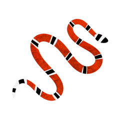 Lampropeltis triangulum red snake reptile vector