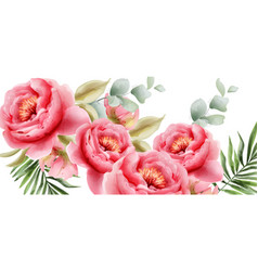 pink peonies watercolor summer exotic floral vector image