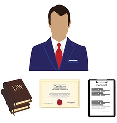 Lawyer consulting service vector image