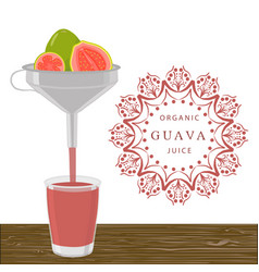 the theme guava vector image