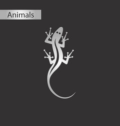 Black and white style icon lizard reptile vector