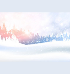 day in winter forest woodland landscape white vector image