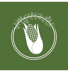 Fresh natural corn vector
