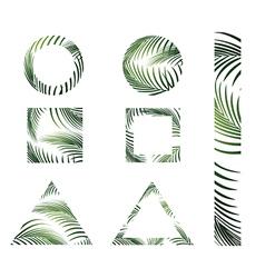 Jungle Palm Leaves Design vector image