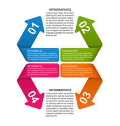 Options infographic timeline design template for vector