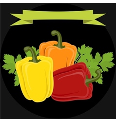 Peppers and parsley isolated on black background vector
