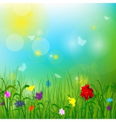 Summer meadow with butterflies vector image