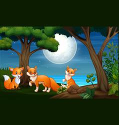 Three fox hunts at night vector