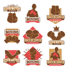 Boxing club or boxer school championship vector