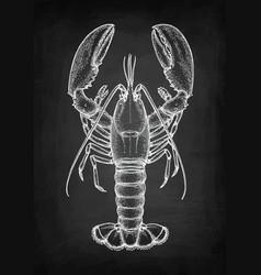 chalk sketch of lobster vector image
