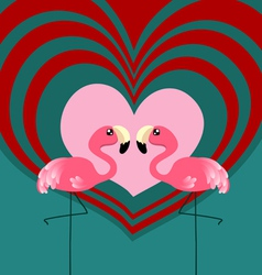 Couple flamingo love vector image