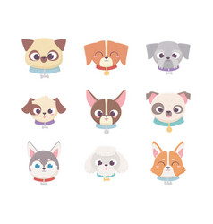 cute heads breeds domestic cartoon animal set vector image