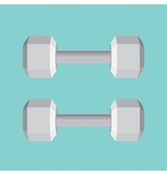 Dumbell double big isolated gym equipment for vector