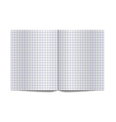 exercise book for writing spread with empty vector image