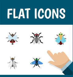 Flat icon housefly set of tiny buzz gnat and vector