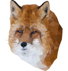 low poly fox vector image
