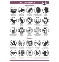 Symptoms and causes zinc deficiency template vector