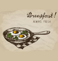 fried eggs with broccoli on pan hand drawn vector image